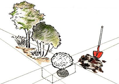 gartenbau-gestaltung-ihres-gartens